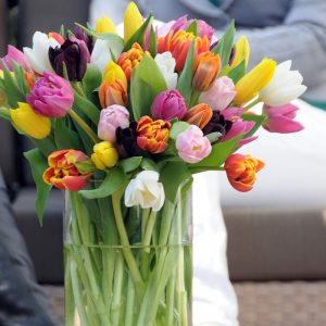 Love Mix Tulips